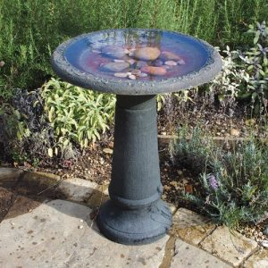 bird bath with rock